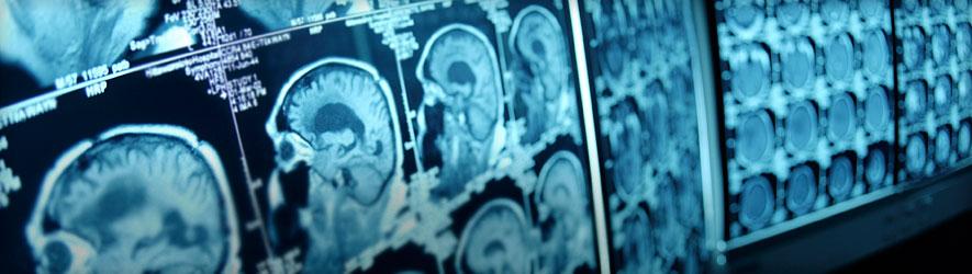 neuroscience-banner